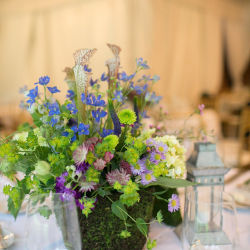 Thomas Jefferson DC Wedding 5762